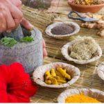 Ayurvedic Herb Lists