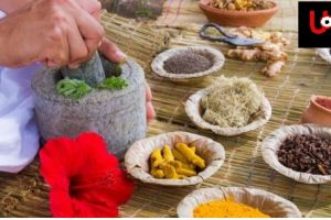 Ayurvedic Herb Lists