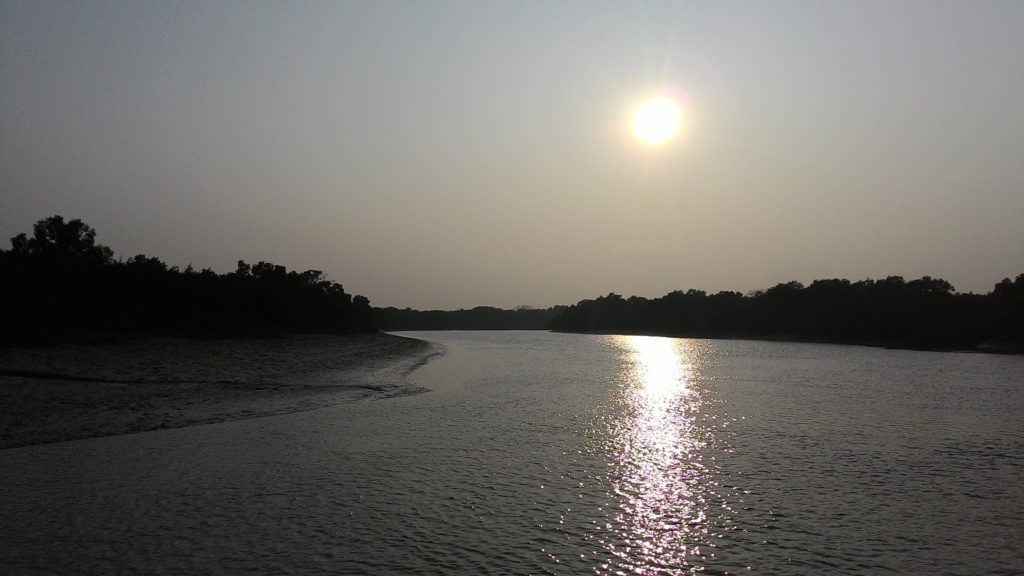 Sunset at Bhitarkanika