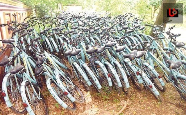 Mo Cycle Cost