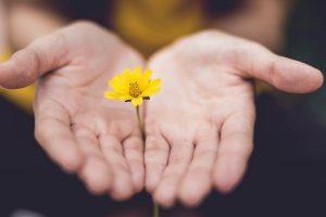 forgiveness_benefits