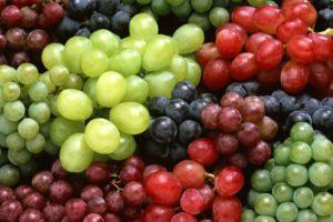 grapes 1462601547 835x547